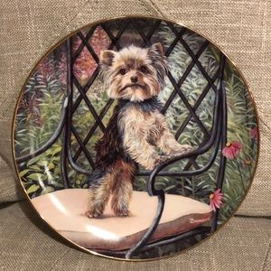 Yorkie Decorative Porcelain Collector Plate